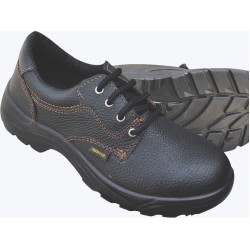 SHIELD SAFETY SHOES
